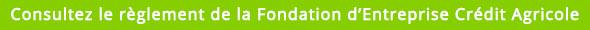 Consultez le règlement de la Fondation d'Entreprise Crédit Agricole Toulouse 31 en cliquant ici